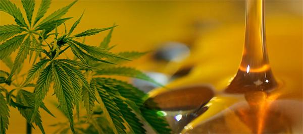 remedios-caseros-a-base -de-marihuana